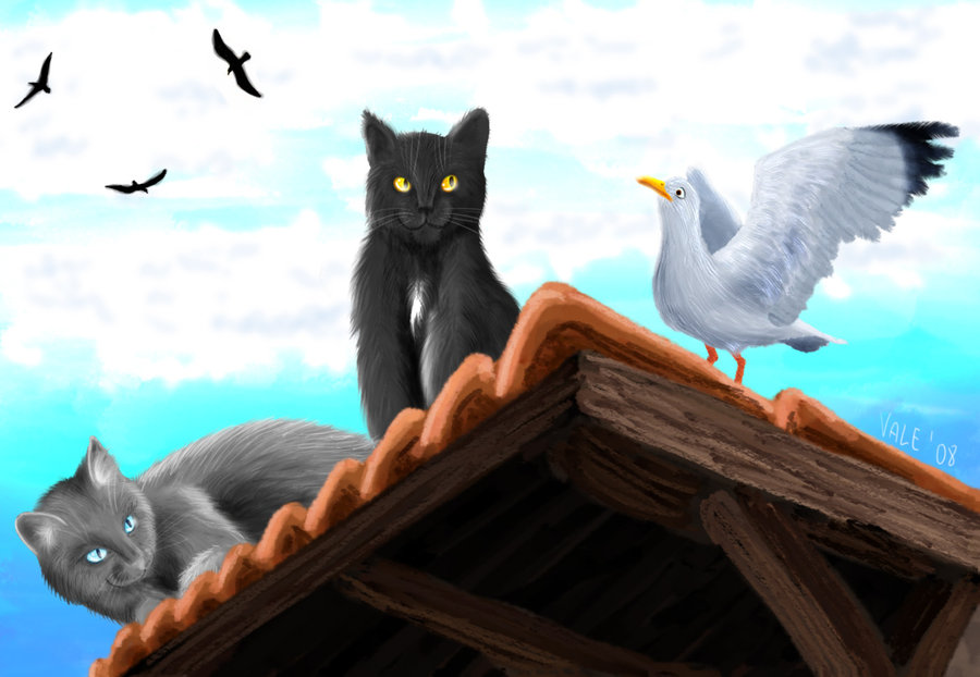 Cats_and_Seagulls_by_Terazed